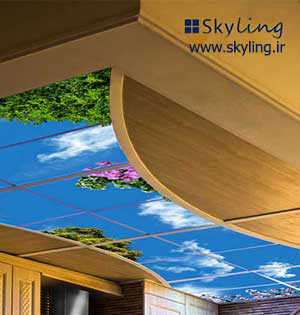 Skyling | Virtual Window | Virtual Sky